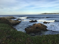 My walk this morning from home to Carmel Beach and back (LOLO Italiana) Tags: carmel ca seascape nature pacificocean carmelbeach cottages trees leavesturningcolor mapleleaves beach sand water ocean sea