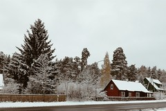 One day at autumn. (littleninox) Tags: estonia autumn fall winter countryside house nature building forest snow cold day