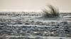 Baie d'Audierne (G.Corsand) Tags: astoundingimage