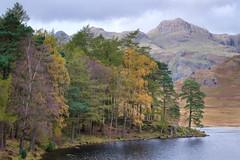Blea Tarn autumn