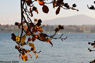 Autumn in Geneva