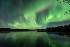 Aurora storm (grus_p) Tags: auroraborealis aurorastorm northernlights light night nature lake water ice forest trees reflections colours silhouette silence november luminanceboréale finland nightscape sky