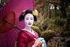 Mameryu - Maiko in Kyoto 13 (JUNEAU BISCUITS) Tags: maiko geisha japan kyoto gion beauty glamour kimono umbrella portrait portraiture japanese nikond810 nikon garden hawaiiphotographer bigislandphotographer oahuphotographer