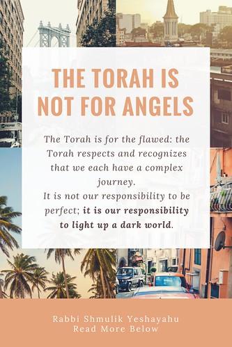 torah not for angels