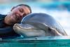 Yes, I like you! (JOAO DE BARROS) Tags: dolphin joão barros animal people portrait