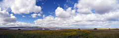 Big Skies (Worthing Wanderer) Tags: northumberland july overcast summer coast seaside castle beach dull