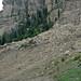 January 2009 landslide (Cedar Canyon, Utah, USA) 2