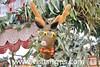Sitges Christmas Festival 2017 (Sitges - Visit Sitges) Tags: sitges christmas festival 2017 visitsitges feria navidad fira nadal patchwork manualitats manualidades