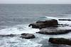 Point Arena 05488 (Omar Omar) Tags: california californie usa usofa etatsunis usono altacalifornia northamérica américadelnorte norteamérica northerncalifornia kelp postelsia postelsiapalmaeformis seapalm palmseaweed pointarena pointarenalighthouse pacificocean océanopacifico océanpacifique faro lumturo phare sea ocean mar waves olas vagues marojondoj maro