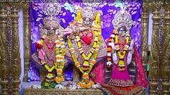 Radha Krishna Dev Shringar Darshan on Wed 13 Dec 2017 (bhujmandir) Tags: radha krishna dev lord maharaj swaminarayan hari bhagvan bhagwan bhuj mandir temple daily darshan swami narayan shringar