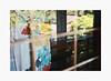 Color Abstraction (bnishimoto) Tags: fuji fujifilm myfujifilm xpro2 hakonegardens saratoga bayarea photoessay classicchrome color japanesegarden spring 35mm
