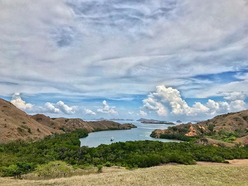 Rinca Island @ Komodo # #wanderlust #mytinyatlas