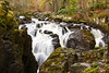 Braan Falls (ian_woodhead1) Tags: fallsofbraan dunkeld perthshire scotland hermitage braan falls