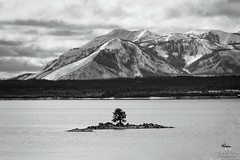Carrington Island (Michelle Pilling Photography) Tags: 2017 carringtonisland yellowstonenationalpark wyoming blackandwhite yellowstonelake mountains water snow clouds