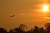 Ab in die Sonne (raschmichael) Tags: morgens sonnenaufgang tegel tegelort tegelersee