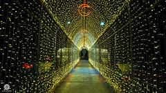Mersin Işık Tüneli (Seyfettin Gundogdu) Tags: ışık tüneli mersin mersinkültürpark idman yurdu meydanı sonyalphaa6000 seyfettin gündoğdu