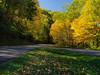 Leaves on the parkway (Tim Ravenscroft) Tags: leaves tress blueridgeparkway autumn fall hasselblad hasselbladx1d