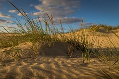 Dunes (99baggett) Tags: mountainstoseaworkshops obx landscape jockeysridge dunes jmb1950 jockeysridgestatepark mbaggettphotography nagshead nc northcarolina outerbanks sanddunes