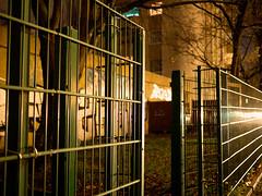 20171110-056 (sulamith.sallmann) Tags: abends berlin deutschland germany gitterzaun mitte nacht nachtaufnahme nachts night nightshot osloerstrase soldinerkiez wedding zaun deu sulamithsallmann
