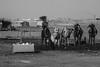Feed ! (obyda) Tags: feed food camel natural nature blackwhite bnw black blackandwhite desert saudi streetphotography
