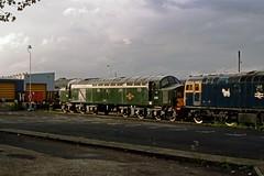 D335, Tyseley, May 1988 (David Rostance) Tags: d335 40135 class40 englishelectric 27059 class27 brcw tyseley birmingham d5410