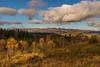 The North Wales' Wilderness (Rob Pitt) Tags: llyn elsi cymru wales autumn uk rob pitt photography landscape wood forest mountain sky tree water grass serene carneddau photogrphy