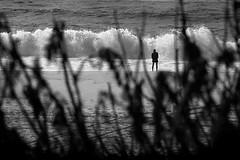la forza per ricominciare.. (s@brina) Tags: strength soul energy thinking waves ocean