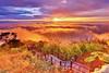 天堂路 Stairway to Heaven (Singer 晴哥) Tags: canon 6d canonef1635mmf28lⅱusm 二代鏡 32sec f20 iso160 17mm 漸層減光鏡 天堂路 天梯 stairway階梯 樓梯 trail步道 天空步道 方向性 延伸感 heaven天堂 仙境 天上人間 滾滾紅塵 山頂top 火燒雲glow 雲海 seaofclouds 壯觀 山嵐 雲浪 低雲族 霧mist fog 夕陽sunset 日芒 星芒 黃昏twilight 天空sky 氛圍atmosphere 意境 重心 遊客tourist 人person 點景 大小對比 五分 前中後景 空間感space 光影light shadow 明暗對比 長曝 longexpose 動靜對比 層次layer 構圖composition 雲cloud 山mountain 樹tree 芒花awn 風景landscapes 晨昏 攝影photography 看見 台灣 臺灣taiwan 嘉義 隙頂 第一次到隙頂就遇到大景 二延平步道 觀景台 涼亭 阿里山 alishanmountain singer 晴哥