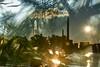 October Afternoon (pni) Tags: sky sea water reflection sun powerplant needle tree pine vapour vapor wave multiexposure multipleexposure tripleexposure lapinlahti ruoholahti gräsviken lappviken helsinki helsingfors finland suomi pekkanikrus skrubu pni