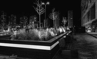 City Lights and Empty Benches