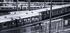 7 Trains Meeting in Queens (PAJ880) Tags: mts 7 train meet queens sunnyside bw mono new york city