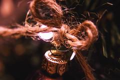 Christmas bow (Jenny Karakasheva) Tags: christmas christmastree cozy home christmaslights 7dwf buttonsandbows macromondays bow