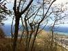 IMG_3503 (Dreaming of Asters) Tags: hawaii oahu kokohead kokocrater
