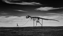 Crossing The Prairie....6O3A1663Ab (dklaughman) Tags: murdo southdakota sculpture 1880town dinosaur blackwhite bw