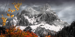 Bichromie Haut-Savoyarde (Didier HEROUX) Tags: bichromie aiguille warens sallanches montagnes mountains paysage landscape alpes alpi alps alpen didierheroux herouxdidier leica raw panasonic beautiful love photography noir blanc couleurs noiretblanc automne autumn saison rouge orange 74 flickr balade rando randonnée hautesavoie alpesdunord auvergnerhônealpes france french sommet neige snow froid novembre feuille feuillage fall europe région yellow best nature gold francophone