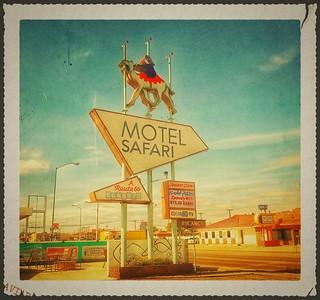 Motel Safari....