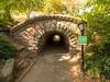 Inscope Arch, Central Park. (Luis Pérez Contreras) Tags: viaje eeuu usa trip 2017 olympus m43 mzuiko omd em1 manhattan nyc newyork nuevayork estadosunidos centralpark inscopearch