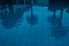 Reflection of palms (BrianEden) Tags: travelphotographer pool palmtrees xpro2 reflection fujifilm southafrica travelphotography travel hotel mountnelson fuji za capetown mtnelson belmond swimmingpool westerncape