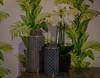 From the K. A. Roos gallery (frankmh) Tags: ceramics design wallpaper flower karoosinteriorgallery kullagunnarstorp helsingborg skåne sweden indoor