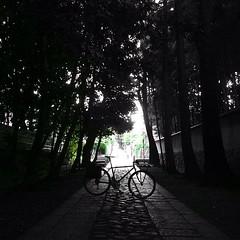 【 冬活… 】 (jun.skywalker (enishi hand made cyclecap)) Tags: instagramapp square squareformat iphoneography uploaded:by=instagram iphone iphone4 bike bicycle vigore mtb kyoto japan bw 白黒 大徳寺 daitokujitemple daitokuji