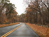 The Bend in the Road (Mildred Alpern) Tags: road curves ben trees leaves autumn outdoors rocks boulders