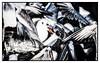 Avian Food Fight (Andy J Newman) Tags: action nikon foods bird bleach fight duck seagull d500 colorefex salisbury england unitedkingdom gb