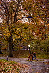1341_0484FLOP (davidben33) Tags: newyork central park street streetphotos people nature trees bushes leaves colors green yellow blue sky cloud lake portraits women girl cityscape landscape autumn fall 2017 beauty