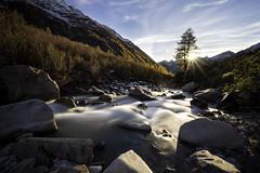 The golden valley (Martin Häfeli Photography) Tags: valais switzerland nikon schweiz berge mountais autumn fall herbst bach bergbach lötschental wallis creek