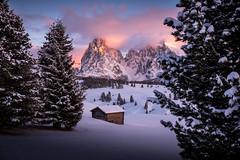 The View (Chris Buhr) Tags: seiser alm dolomiten landschaft landscape south tyrol südtirol view aussicht sunset sonnenuntergang winterlandschaft leica chris buhr tree snow winter