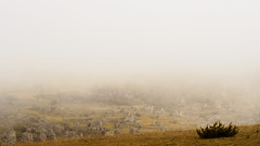 olY/291 .. foggy refuge! (m_laRs_k) Tags: grandcausses nimeslevieux chaos fog olympus landscape omd 14150 7dwf