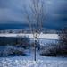 171204-winter-snow-first-season.jpg