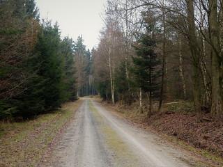 2017 Germany // Wanderung im Taunus //