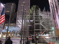 2017 Christmas Tree Rockefeller Center NYC 3641 (Brechtbug) Tags: 2017 christmas tree rockefeller center before lights 11112017 nyc 30 rock new york city standing up above ice rink with snow shoveling workers skating holiday decoration ornaments night lites light oversize load ornament prometheus gold mythological statue sculpture fountain fountains scaffolding scaffold pre thanksgiving
