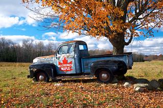 truck + tree